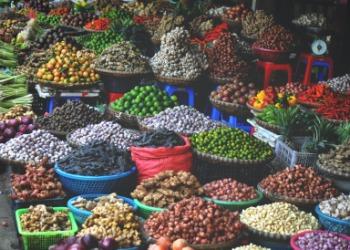 Estudo de Oportunidades de Alimentos e Bebidas no Vietnã 2020