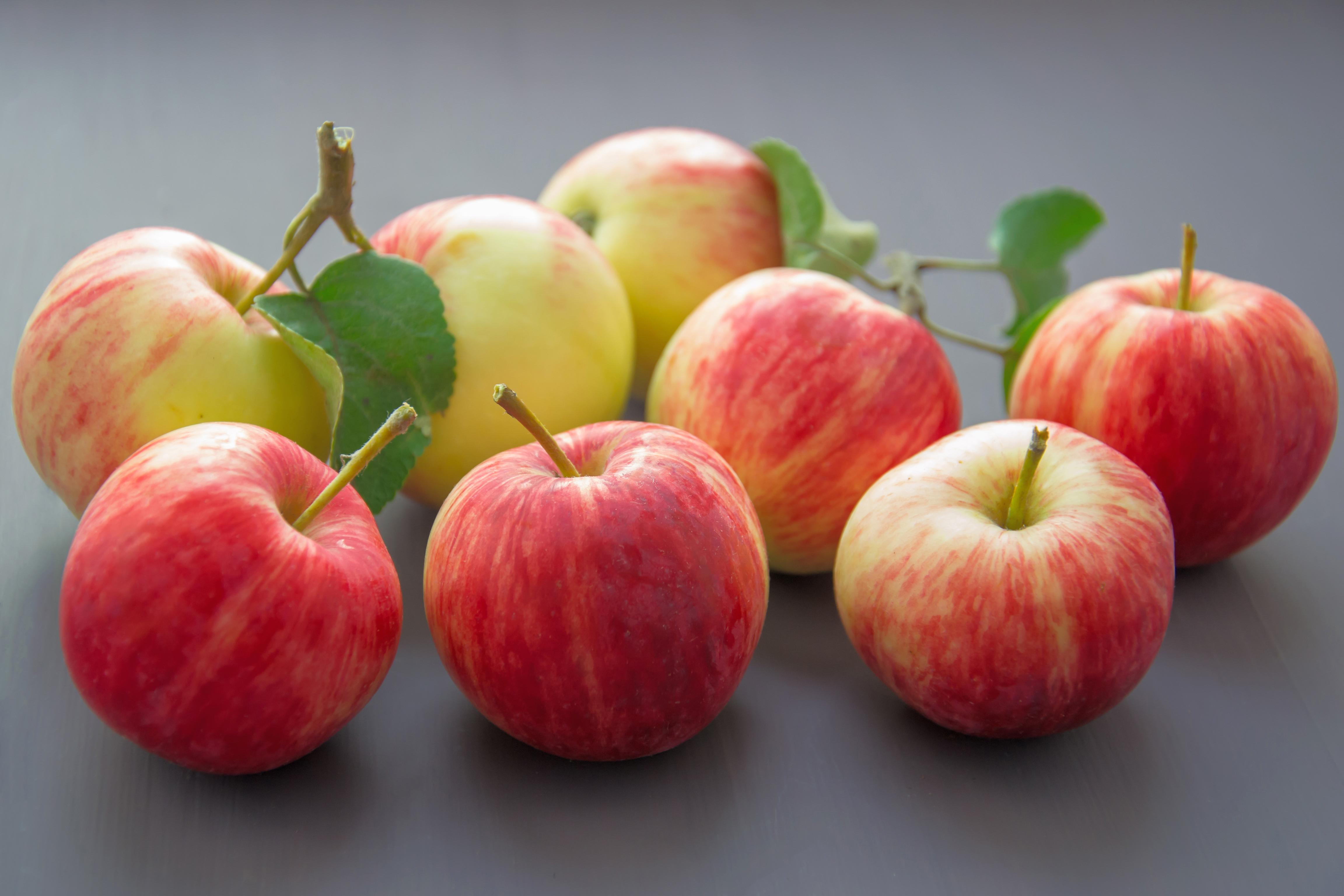 Exportações de maçãs brasileiras para a Rússia triplicam em 2020 com ajuda da Apex-Brasil